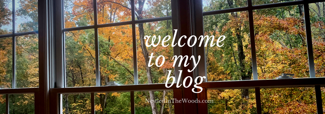 Nestled in the woods homeschool journey
